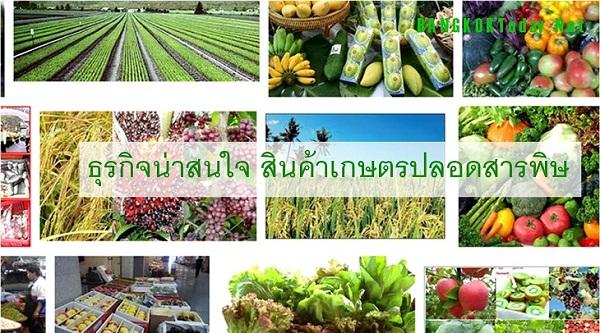 ธุรกิจน่าสนใจ สินค้าเกษตรปลอดสารพิษ โอกาสของทายาทเกษตรกรไทย