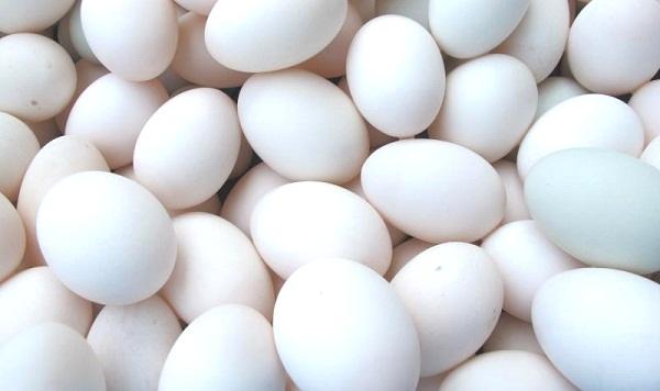 วิธีทําไข่เค็ม ไข่เป็ด สูตรออริจินัล ทำไว้กิน ไว้ขายสร้างรายได้